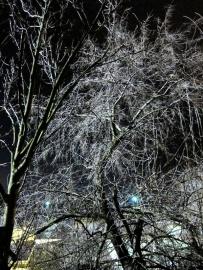die schöne seite des wetters / foto: parcelpanic