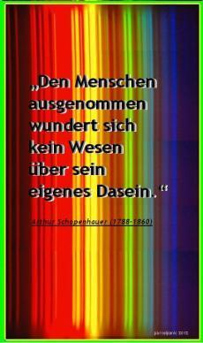 schopenhauer_zitat