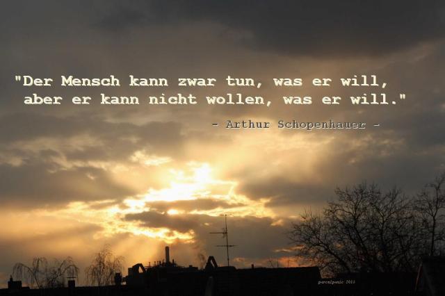 schopenhauer_der_mensch_kann